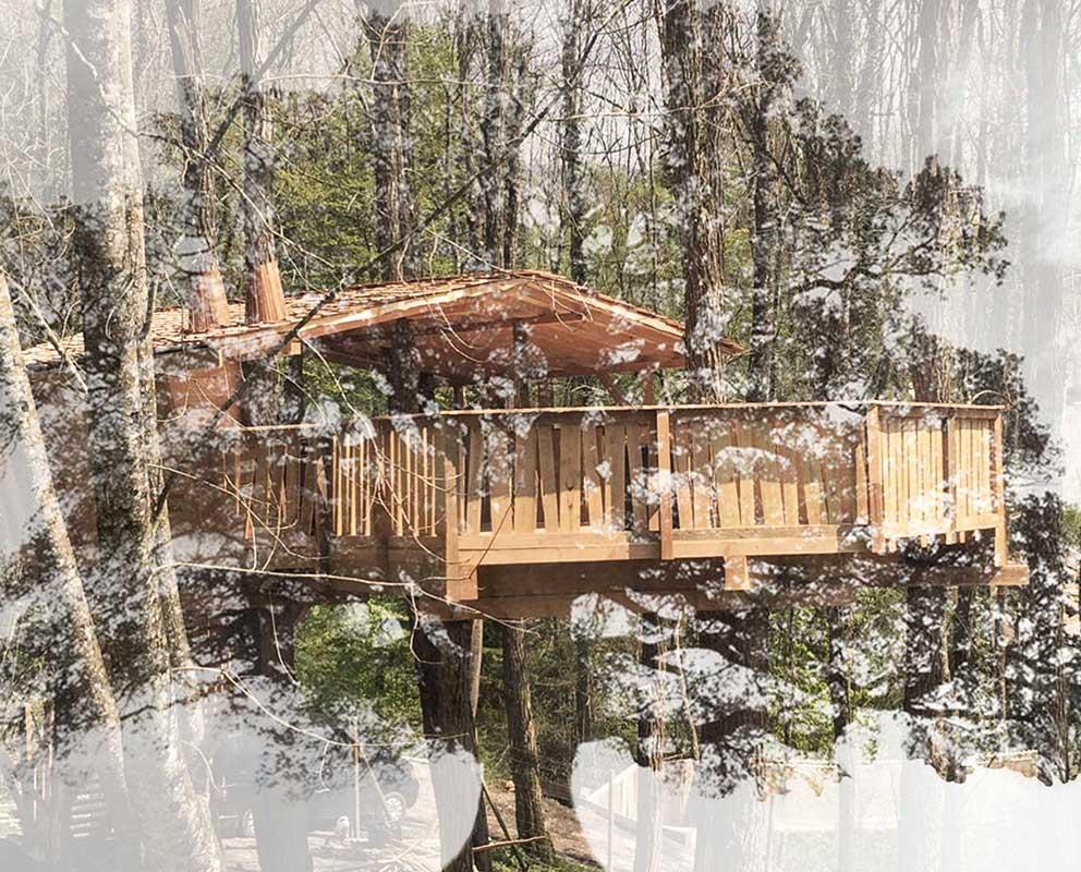 Dreamwood Outdoor